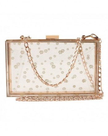 Transparent Evening Handbags Cross Body Approved